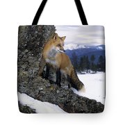 Red Fox In The Mountains Tote Bag