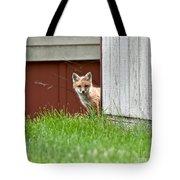 Red Fox Kit Peaking Around Old Barn Tote Bag