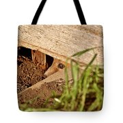 Red Fox Kit Peaking Out From Den Under Old Granary Tote Bag