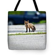 Red Fox Kit Standing On Old Road Tote Bag