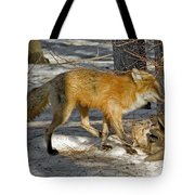 Red Fox Mommy And The Cutest Puppy Tote Bag
