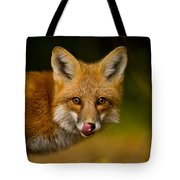 Red Fox Pictures 157 Tote Bag