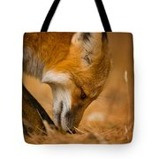 Red Fox Pictures 164 Tote Bag