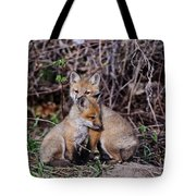 Red Fox Pictures 65 Tote Bag