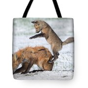 Red Fox Pounce Tote Bag