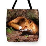 Red Fox Resting Square Tote Bag