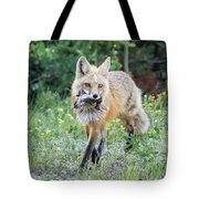Red Fox Vixen Brings Home A Meal Tote Bag