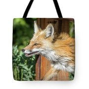 Red Fox Vixen On The Hunt Tote Bag