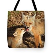 Red Fox Vixen With Pup On Hecla Island In Manitoba Tote Bag