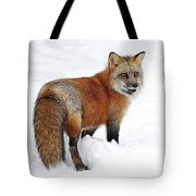 Red Fox Winter Tote Bag