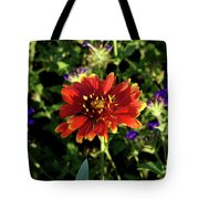 Red Gaillardia Tote Bag by Douglas Barnett