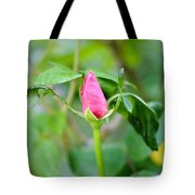Red Garden Rose Bud Tote Bag