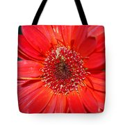 Red Gerber Daisy Tote Bag