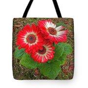 Red Gerbera Daisies Tote Bag