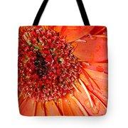 Red Gerbera Daisy Tote Bag