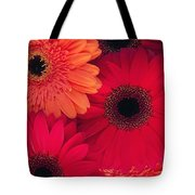 Red Gerbers Tote Bag