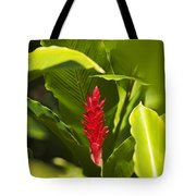 Red Ginger Flower Tote Bag