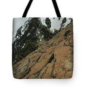 Red Granite Tote Bag
