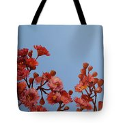 Red Gum Blossoms Australian Flowers Oil Painting Tote Bag
