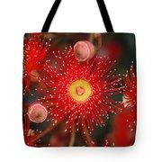 Red Gum Flower Macro Tote Bag