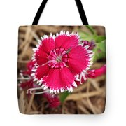 Red Handed Tote Bag