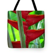Red Heliconia Tote Bag