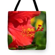 Red Hibiscus And Green Tote Bag
