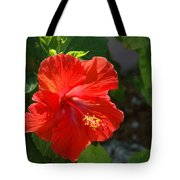 Red Hibiscus II Tote Bag