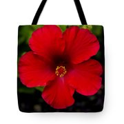 Red Hibiscus - Kauai Tote Bag