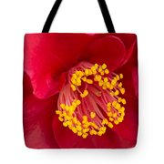 Red Camellia Tote Bag