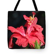 Red Hibiscus Square 2 Tote Bag