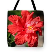 Red Hibiscus Square Tote Bag