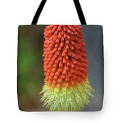 Red Hot Pokers Tote Bag