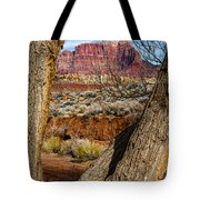 Red In The Distance Tote Bag