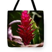 Red In The Forest Tote Bag
