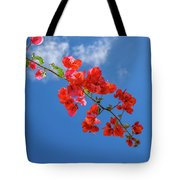Red In The Sky Tote Bag