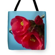 Red Is The Color Of My True Loves Lips Tote Bag