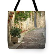 Red Ivy And Steps In Assisi Italy Tote Bag
