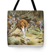 Red Kangaroo Tote Bag