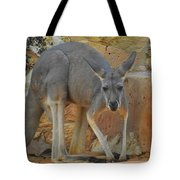 Red Kangaroo Tote Bag