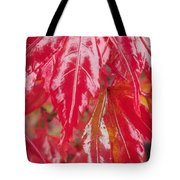 Red Leaf Abstract Tote Bag