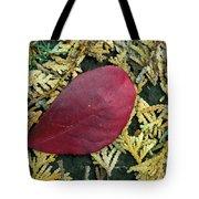 Red Leaf On  Arborvitae Leaves Tote Bag