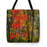 Red Leaves Of Autumn Tote Bag