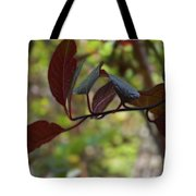 Red Leaves With Frame Tote Bag