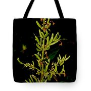 Red Lilac Seeds Tote Bag