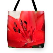 Red Lilly Tote Bag