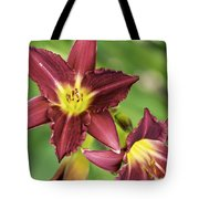 Red Lily 2 Tote Bag
