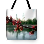 Red Maple Buds At Dawn Tote Bag