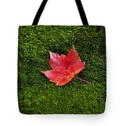 Red Maple Leaf  Tote Bag
