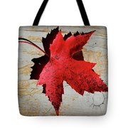 Red Maple Leaf With Burnt Edge Tote Bag